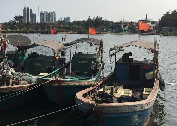 Tàu cá gắn cờ Trung Quốc chuẩn bị đổ bộ xuống Biển Đông (Ảnh: Reuters)