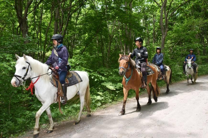 Khoảng 150 cảnh sát và nhân viên cứu hộ đã cùng nhau tìm kiếm Tanooka từ hôm 28/5 (Ảnh: AP)