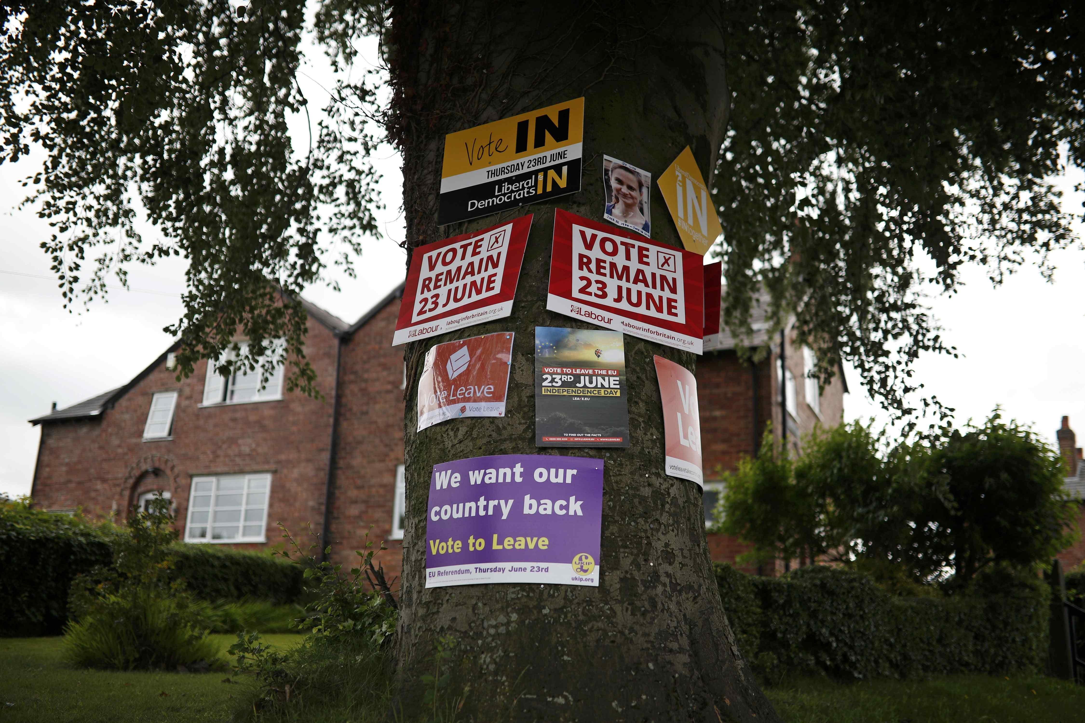 """Sự chia rẽ về lựa chọn """"đi"""" hay """"ở"""" của công chúng Anh thể hiện rõ trên những tấm poster được treo trên một thân cây ở Lymm (Ảnh: Reuters)"""