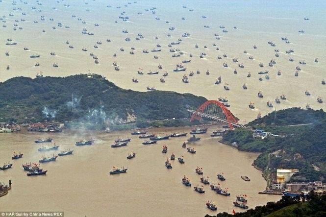 Hàng trăm tàu cá Trung Quốc trong một lần ra khơi từ Chiết Giang (Ảnh: Daily Mail)