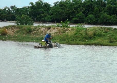 Trong đợt cá chết hàng loạt ở vùng biển các tỉnh miền Trung vừa qua, nhiều hộ dân làm nghề nuôi cá lồng bè trên sông Gianh ở tỉnh Quảng Bình cũng bị ảnh hưởng rất lớn.