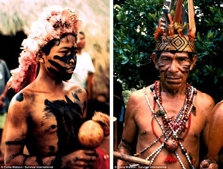 Người Guarani đã từng có dân số lên tới 400.000 người khi người Châu Âu mới bắt đầu tới định cư ở Nam Mỹ hồi thế kỷ 16.
