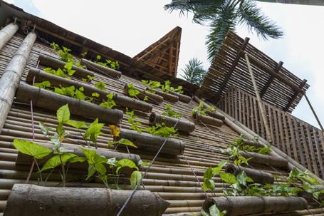 Những ngôi nhà Việt được giới thiệu trên tạp chí kiến trúc quốc tế - 10