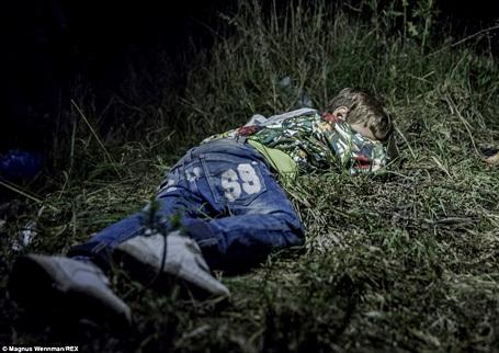 Cậu bé Ahmed 6 tuổi ngủ trên bãi cỏ ở Horgos (Serbia). Trong suốt chặng đường dài mà Ahmed đã phải thực hiện để tới được Châu Âu, cậu bé buộc phải tự mang chiếc ba lô đựng đồ dùng cá nhân của mình. Giờ đây, Ahmed sống với gia đình người bác sau khi cha cậu qua đời ở quê nhà Deir ez-Zor, miền bắc Syria.