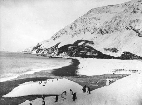Đoàn tìm tới đảo Elephant - đất liền đầu tiên mà họ đặt chân lên sau 497 ngày.
