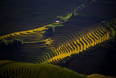 Bình minh (ảnh chụp ở Yên Bái) - Surawut Sudha