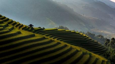 Căn lều ở Mù Cang Chải - Thitisak Watthano
