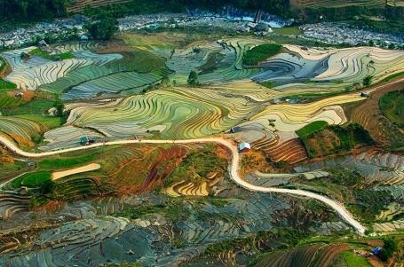 Bức tranh của đất (chụp ở Lào Cai) - Tuan Guitare