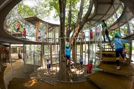 Trẻ được khuyến khích… trèo cây