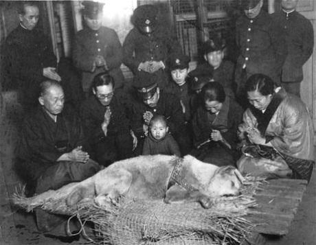 Ngày Hachiko qua đời tại nhà ga Shibuya