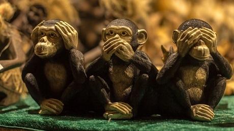 """Triết lý sâu sắc đằng sau 3 chú khỉ """"che mắt, che tai, che miệng"""" - 4"""