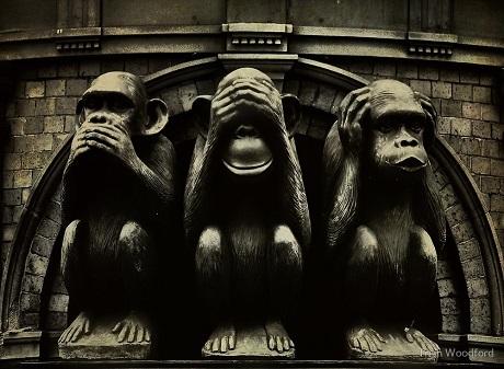 """Triết lý sâu sắc đằng sau 3 chú khỉ """"che mắt, che tai, che miệng"""" - 5"""