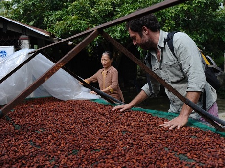 Đi thu mua hạt cacao