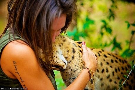 """Một con linh miêu Châu Phi đang """"thám thính"""" người bạn mới."""