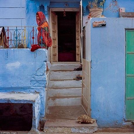 Một phụ nữ Ấn Độ mặc trang phục truyền thống với những màu sắc rực rỡ, nổi bật trên nền tường nhà màu xanh.