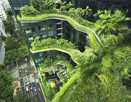 Khách sạn ParkRoyal on Pickering nằm ở khu vực trung tâm của đảo quốc Singapore. Khách sạn mở cửa năm 2013 và có tới 15.000 m2 vườn treo, với những không gian xanh mở rộng và những tầng cây chạy dọc các ban công.