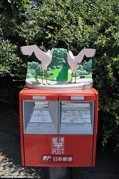 Hai chú chim cùng đậu trên một hòm thư.