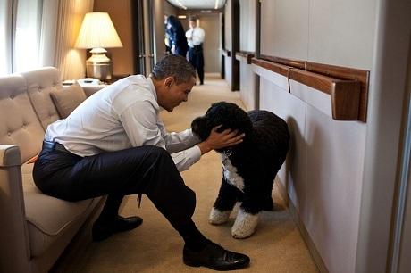 """Nhìn lại """"gia tài"""" của người chụp ông Obama trong hơn… 2 triệu bức ảnh - 17"""