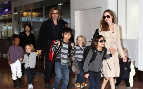Nữ diễn viên 41 tuổi có 6 người con, trong đó có 3 con ruột với nam diễn viên Brad Pitt, gồm Shiloh 10 tuổi, cặp sinh đôi Vivienne và Knox 7 tuổi, họ còn nhận nuôi Maddox từ Campuchia, hiện giờ cậu bé đã 14 tuổi, Pax 12 tuổi đến từ Việt Nam và cô bé Zahara 11 tuổi đến từ Ethiopia.