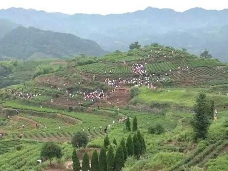 Dân làng cho biết sự xuất hiện của quá nhiều người lạ trong làng khiến cuộc sống vốn dĩ thanh bình của họ bị đảo lộn.