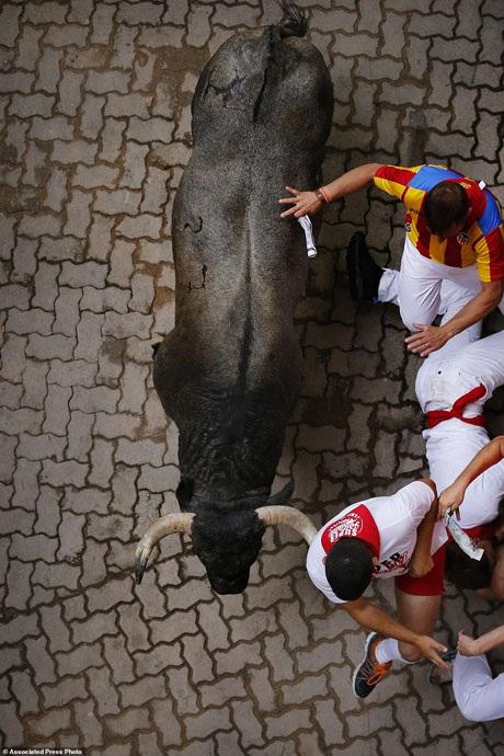 Bàng hoàng chứng kiến người đấu bò đầu tiên thiệt mạng trong thế kỷ 21 - 15