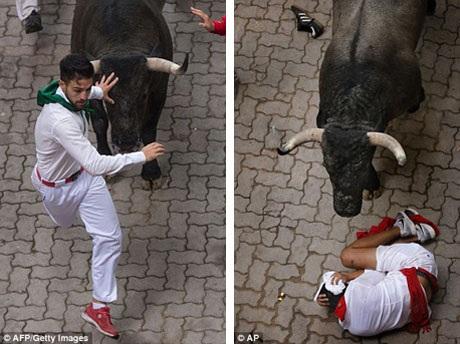 Hàng trăm ngàn du khách từ khắp nơi trên thế giới đổ về Pamplona mỗi năm để tham dự lễ hội đấu bò San Fermin nổi tiếng. Đây được xem là lễ hội đấu bò lớn nhất Tây Ban Nha. Năm nay có hơn 1.000 người đăng ký tham gia những cuộc chạy đua với bò tót.