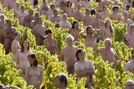 Những tình nguyện viên tham gia buổi chụp hình trong một vườn nho ở xã Fuisse thuộc miền trung nước Pháp vào ngày 3/10/2009.