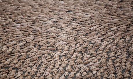 Hàng ngàn người tham gia buổi chụp hình trên quảng trường Zocalo ở thành phố Mexico vào ngày 6/5/2007. Con số kỷ lục lên tới 18.000 người.