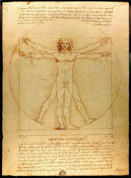 """Vẻ đẹp lý tưởng của hình thể người đàn ông xuất hiện trong tác phẩm nổi tiếng """"Virtruvian Man"""" (Người Virtruvian) của Da Vinci cũng được áp dụng tỉ lệ vàng."""