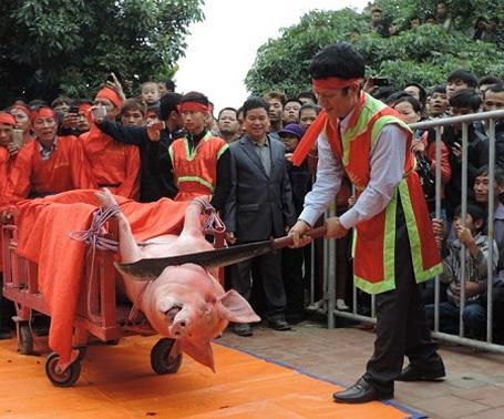 Bộ VHTT&DL kiên quyết không để tái diễn tục chém lợn ở Bắc Ninh