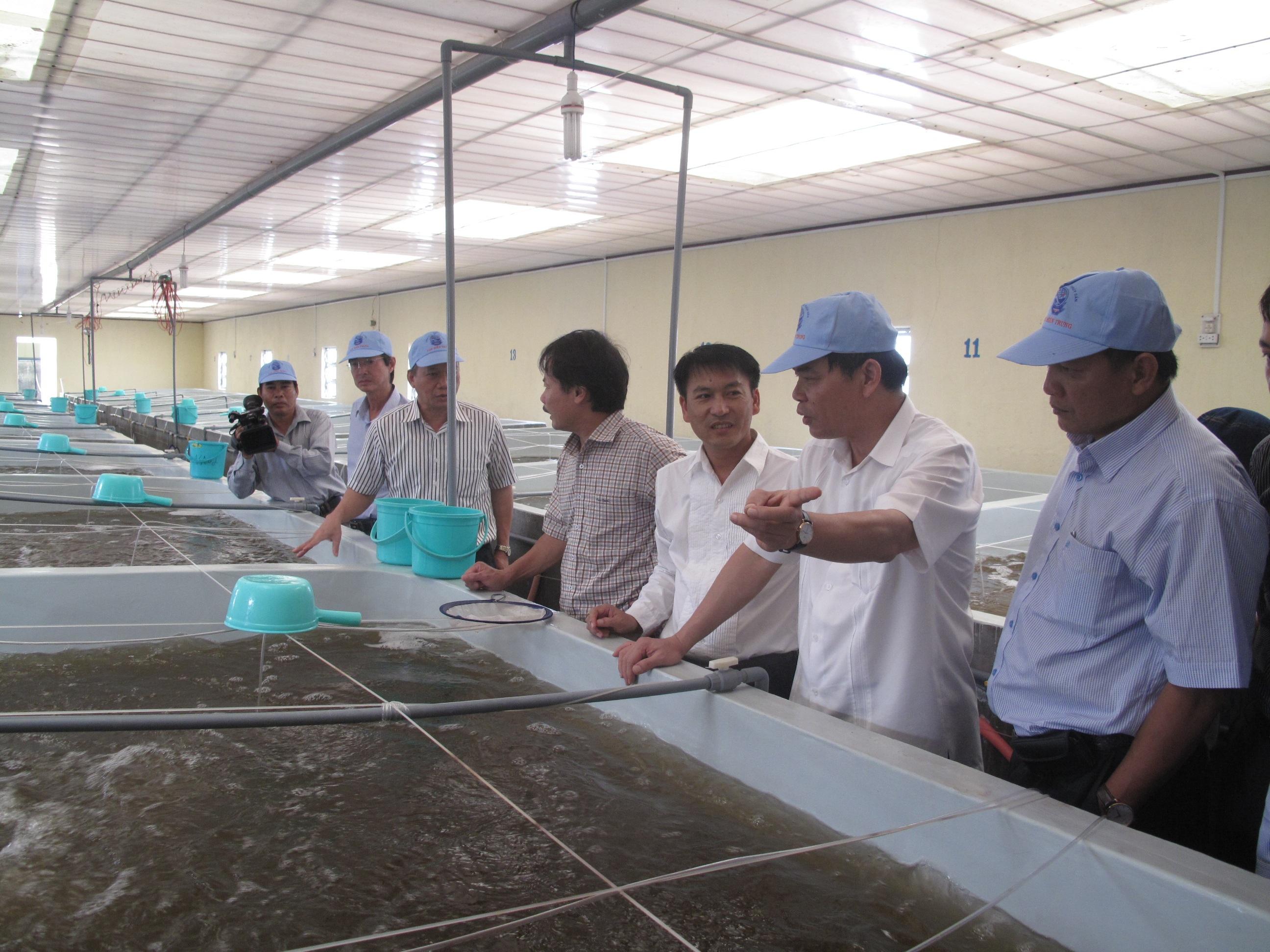 Bộ trưởng Bộ NNPTNT Nguyễn Xuân Cường (thứ 2 từ phải qua) thăm cơ sở sản xuất tôm giống thương phẩm tại thị trấn Vĩnh Tân, huyện Tuy Phong, Bình Thuận.