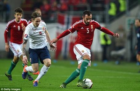 Hungary vượt qua Na Uy để giành vé dự Euro 2016