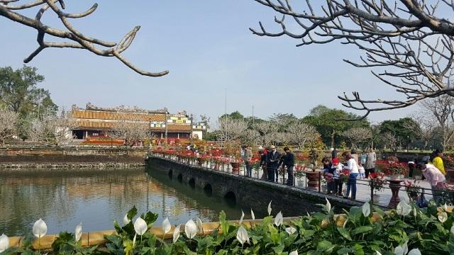 Cầu Trung Đạo dẫn vào điện Thái Hòa được trang trí với nhiều hoa thơm cỏ lạ ngày đầu năm Bính Thân (ảnh: TS. Phan Thanh Hải cung cấp)