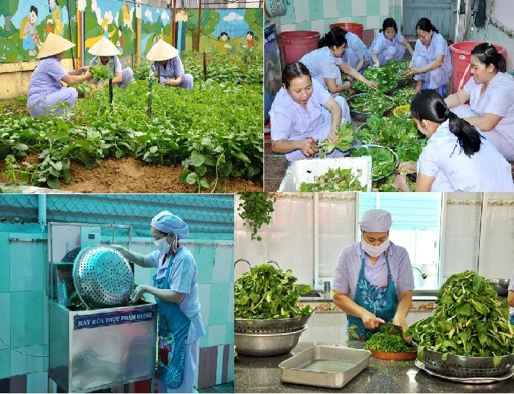 Các khâu từ cắt rau vườn, nhặt rau, rửa rau trên máy lọc ozone, xắt rau đều được làm cẩn thận, sạch sẽ