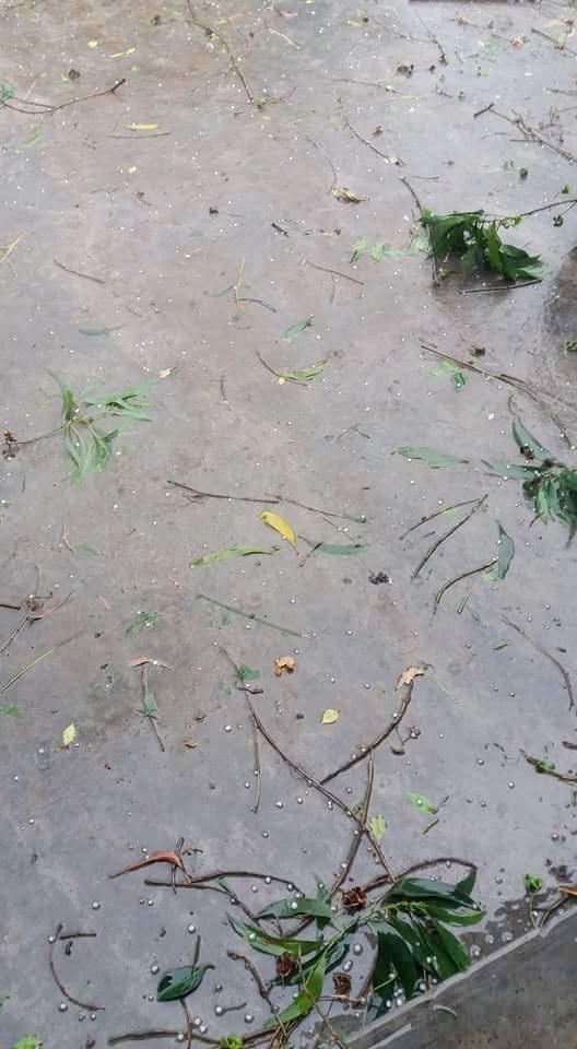 Mưa đá hạt nhỏ rơi xuống trong vòng 1 phút chiều 17/4 tại một số vùng tại Huế