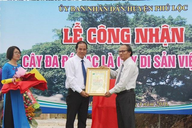 Đại biểu Hội Bảo vệ thiên nhiên và môi trường trao bằng công nhận Cây đa Di sản cho ông Nguyễn Văn Mạnh, Chủ tịch UBND huyện Phú Lộc (bên trái)
