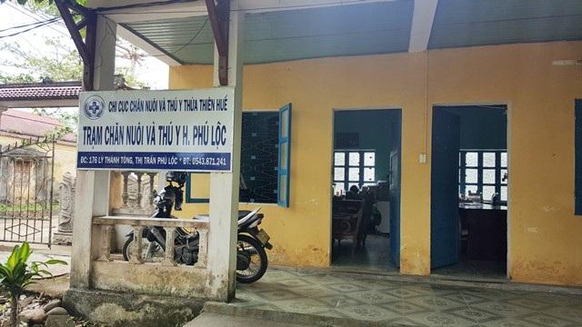 Dư luận đang đặt nghi vấn cán bộ trạm Chăn nuôi và Thú y huyện Phú Lộc đóng dấu lậu cho heo không vào lò mổ tập trung Chân Mây để đưa ra thị trường tiêu thụ