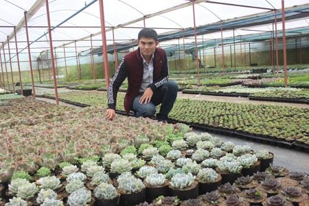 Phạm Thanh Phú bên vườn sen đá hơn 200 loạicủa mình