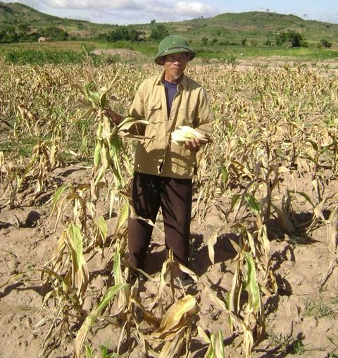 Mùa khô khốc liệt dự báo một vụ Đông xuân của bà con nông dângặp nhiều khó khăn (Ảnh chụp mùa khô năm 2013-2014)