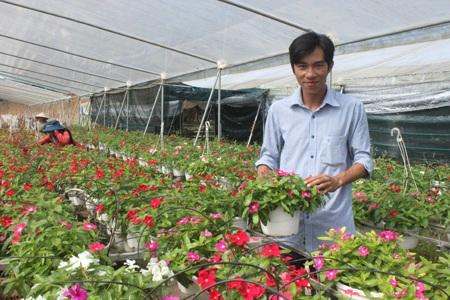 Nguyễn Anh Duy thành công bên vườn hoa của mình