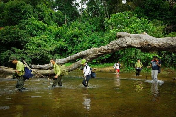 Nếu xây dựng thủy điện trong khu bảo tồn thì dòng suối này sẽ bị cạn kiệt (Ảnh khu bảo tồn cung cấp)