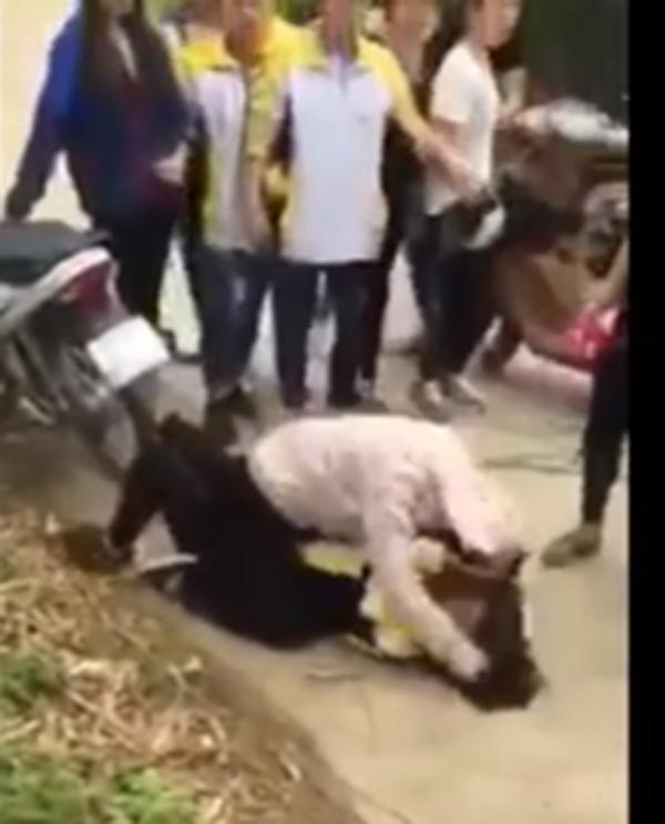 Nữ sinh dùng hai tay đập đầu bạn gái xuống đường nhiều lần (ảnh: cắt từ clip)