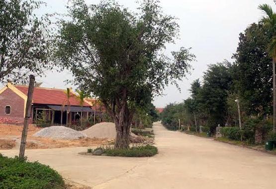 Thanh tra Thành phố Hà Nội chính thức vào cuộc làm rõ trách nhiệm tổ chức, cá nhân để hơn 50 căn nhà không phép mọc trong rừng MU