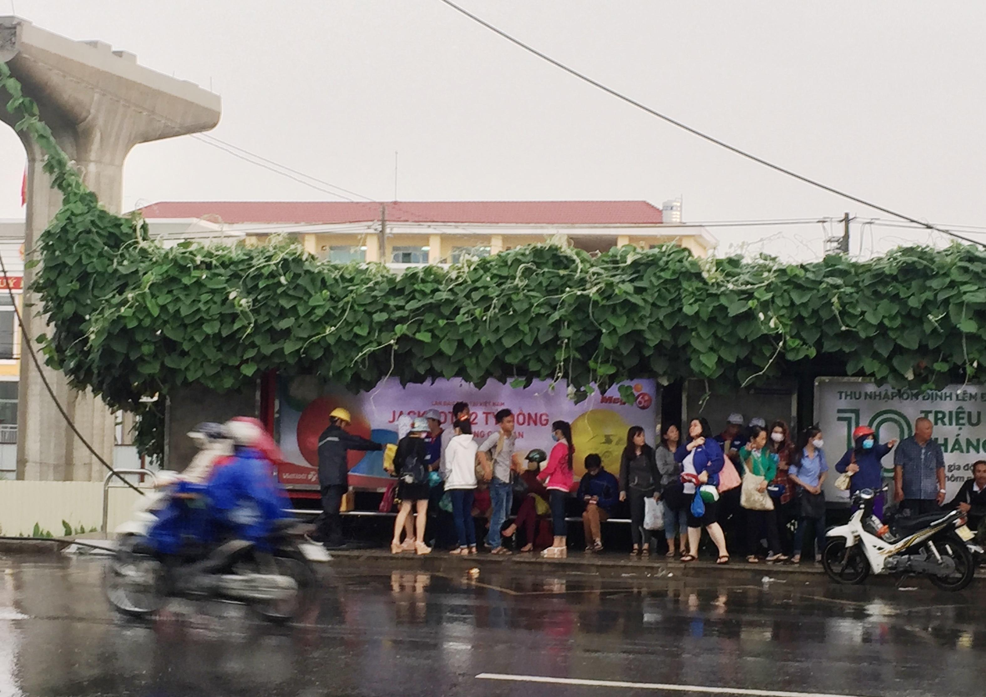Hàng chục người đang trú mưa dưới trạm xe buýt trên XLHN một phen kinh hoàng vì sét đánh trúng đường dây điện trung thế.