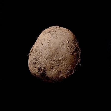 Bức ảnh củ khoai tây do Kevin Abosch chụp được bán với giá 1 triệu Euro