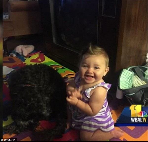 Polo rất thân thiết với Viviana khi chú chó này còn sống