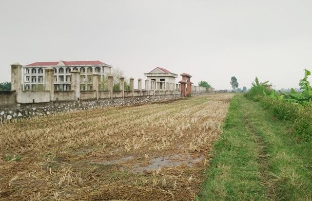 Đường vào cổng chính của trường vẫn đang còn là ruộng lúa