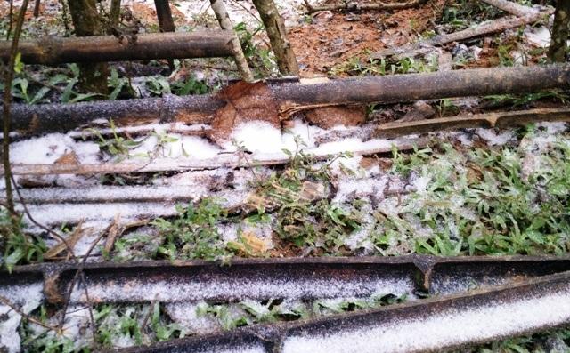Tuyết rơi phủ trắng bản làng ở Thanh Hóa - 5