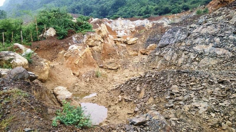 Nhiều ha rừng sản xuất tại thôn Đá Hà, xã Gia Hòa, Gia Viễn bị khai thác một cách không thương tiếc