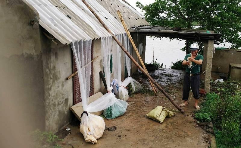 Một hộ dân dùng lưới chằng chống nhà cửa tránh gió bão gây thiệt hại.